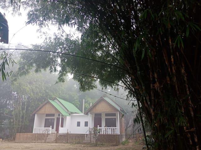 Jyoti Majuli Homestay Delux Room II