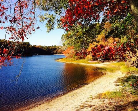 Lake waterfront: swim, fish, kayak!