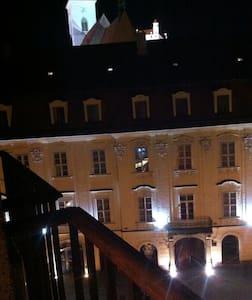 Heart of bratislava - castle view!