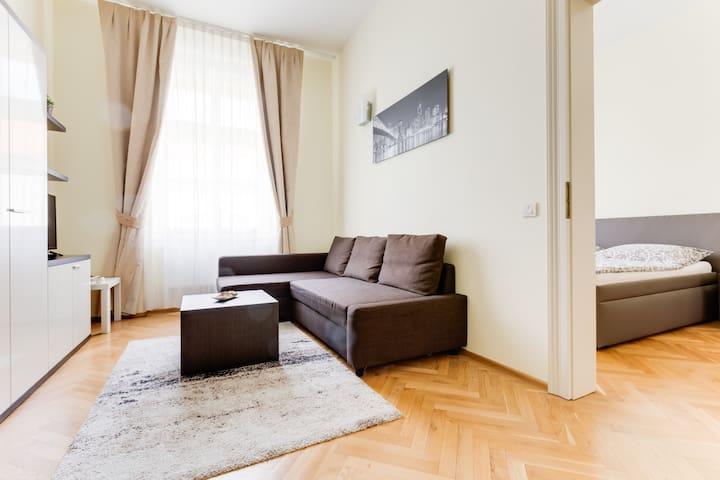 Apartment Halkova 5