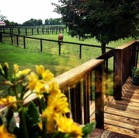 Windy Corner Farm - Lexington - Huis