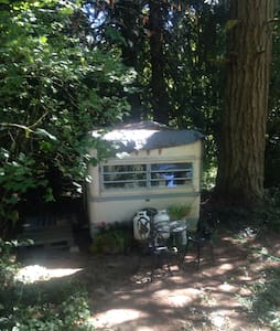 Farm retreat in vintage trailer - Portland
