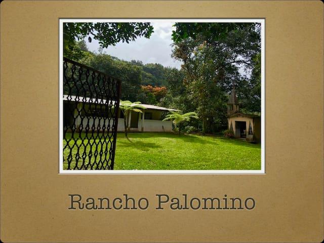Rancho PALOMINO