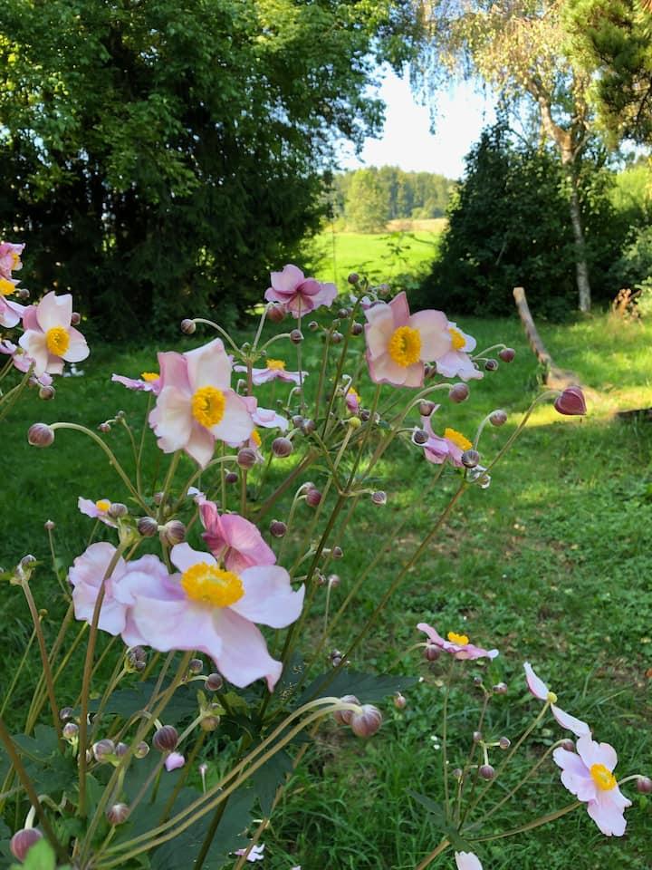 Ferienhaus - Naturliebhaber, Sportler, Hundefreund