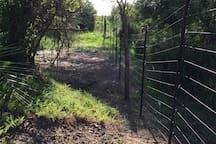 Swara fence