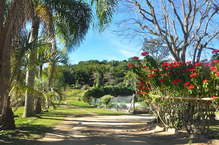 Country House Surrounded by Beachs - Florianópolis - Chalet
