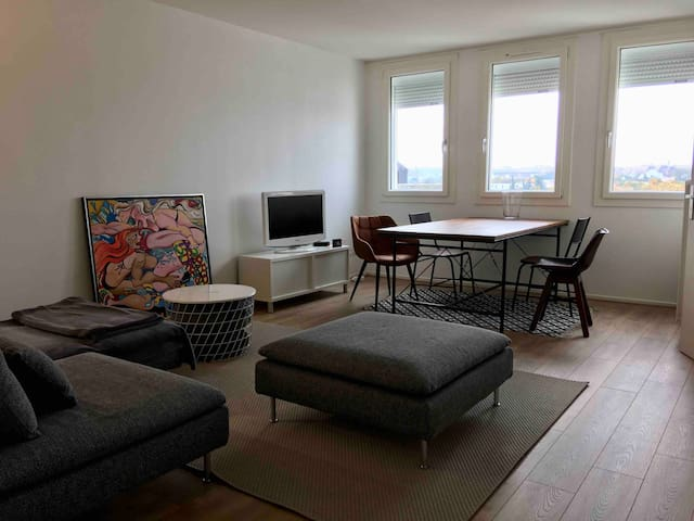 Spacious apartment, new, quiet, near Paris