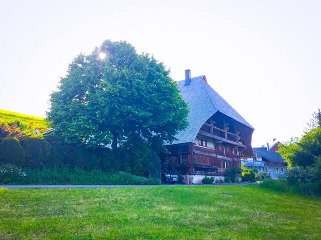 Idyllisches Schwarzwaldhaus im kleinen Luftkurort