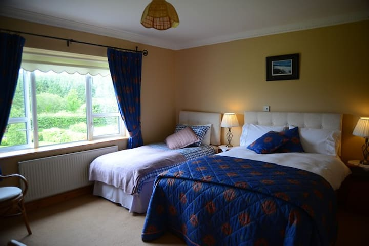 The Blue Room, Kilclare, (Breakfast included)