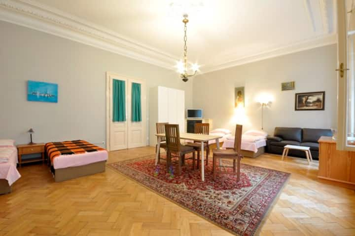 5 Rooms | 220m² | City Center | huge | with garden