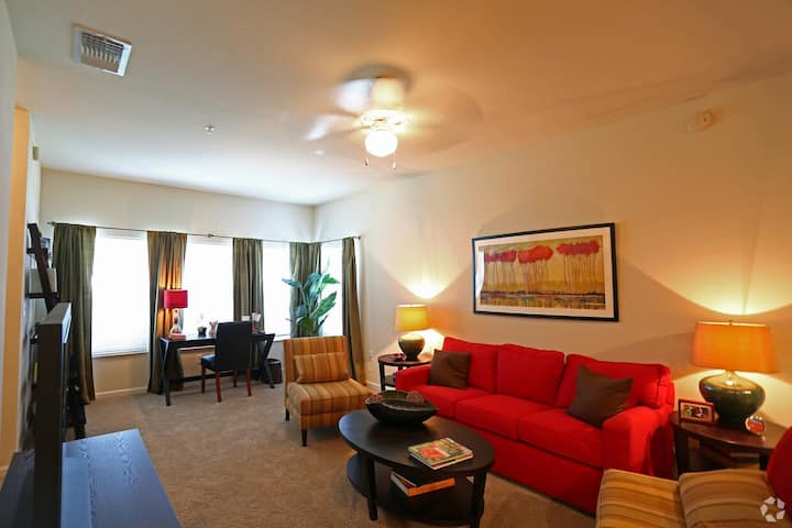 Cozy apartment for you | 1BR in Lakeland