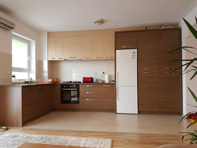 Monica Cosy - Oradea - Apartment