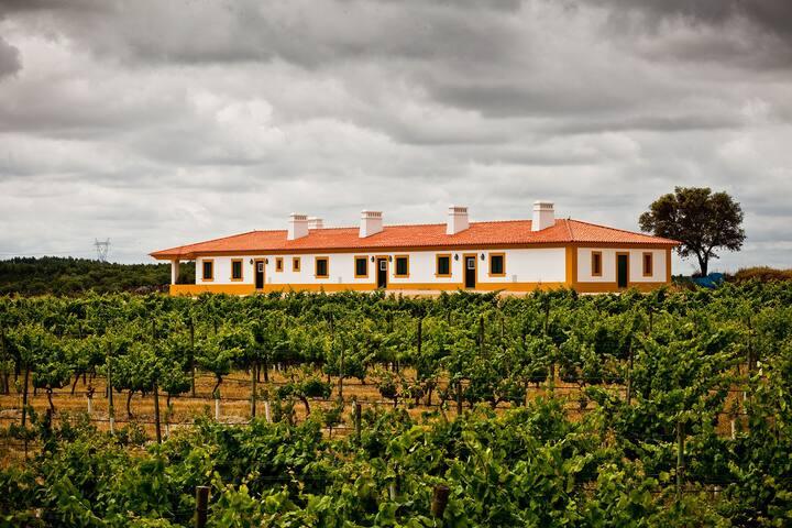Casa Gamito - (na vinha da Herdade do Gamito)
