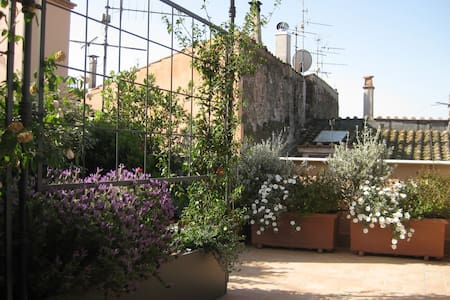 a terrace between Rome and Tuscany - Canino - House