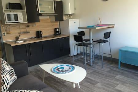 100m Boulevard des Pyrenees, T1 BIS - Pau - Apartment