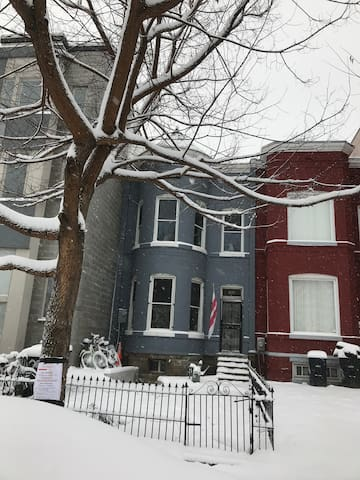 Single bed Victorian near Capitol Metro WIFI