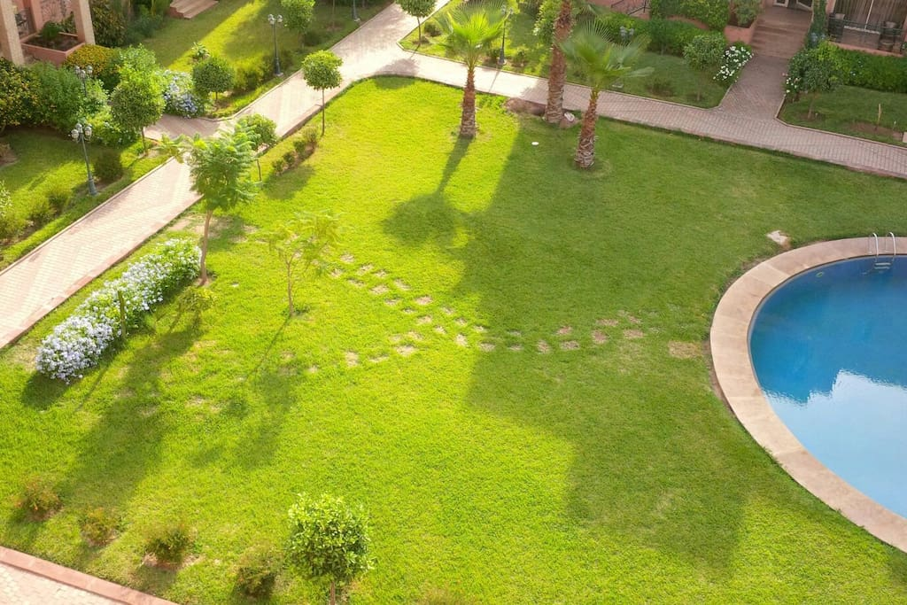 Jardin et solarium. Garden and solarium.
