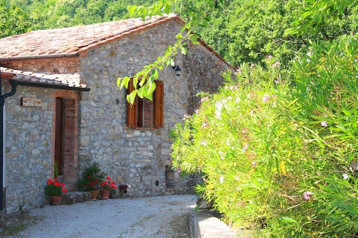 Appartamento nelle Colline Toscana - Montieri - Apartament