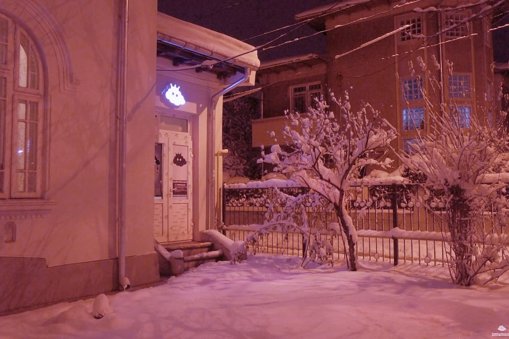 King Cloud in winter