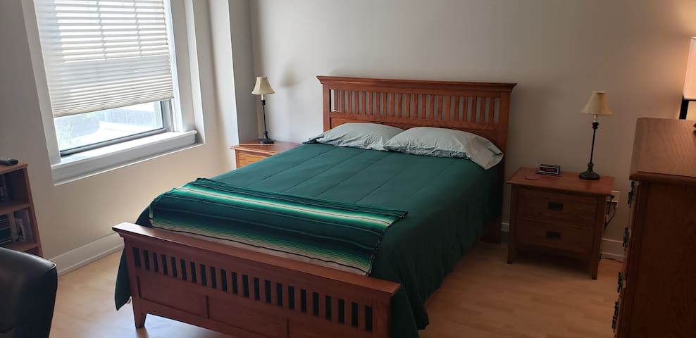 Cozy Condo, Downtown Des Moines, IA (Shared Space)