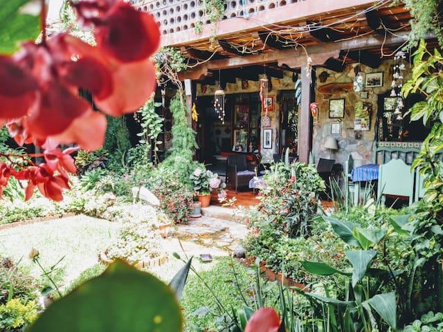 Bougainvillea Room, Peaceful Antigua home, garden