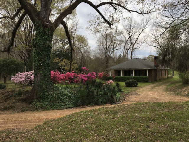 Homewood Plantation Cottage - Natchez - Dom