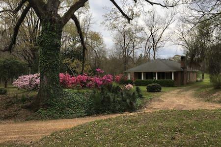 Homewood Plantation Cottage - Natchez - Dům