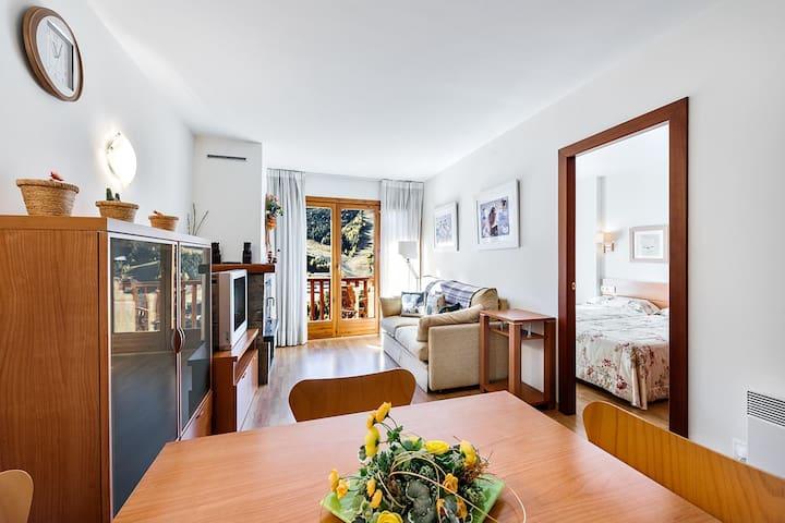 Apartament les Terrasses (El Tarter)