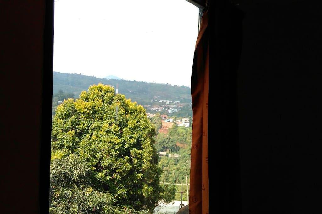 view bukit dari kamar