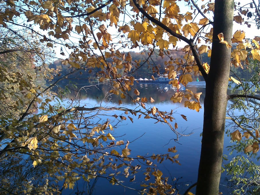 Blick auf den Machnower See im Herbst