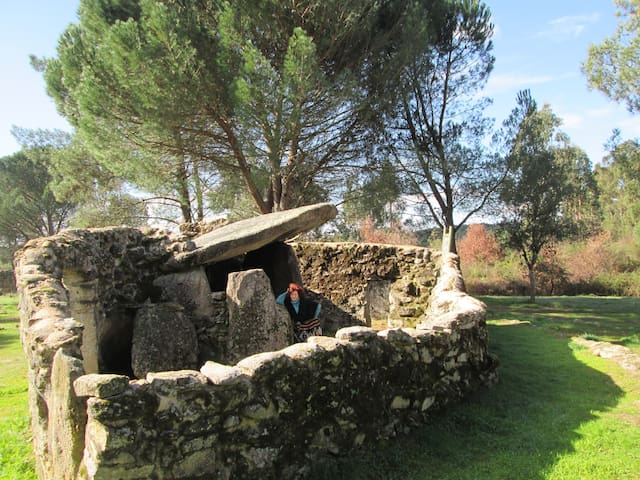 Visit the Dolmens ( ancient 5000 year old burial sites) near us in Carregal do Sal