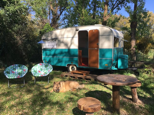 Vintage Trailer Glamping at The Surf Farm