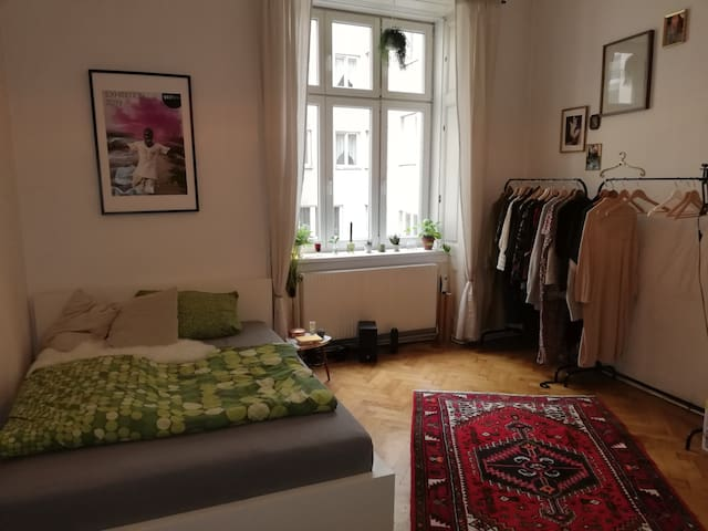 Cozy room in the very heart of Vienna