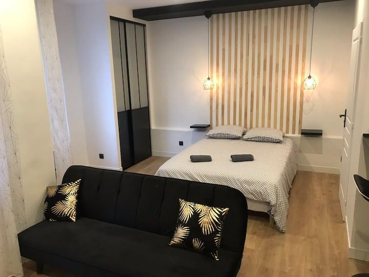 Appartement 30m2 refait à neuf Métro Masséna Lyon6