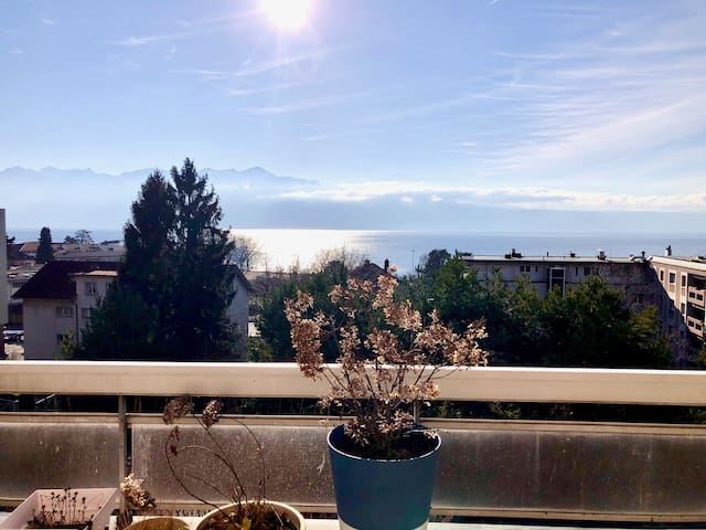Nordic spacious apartment with great view in Lutry