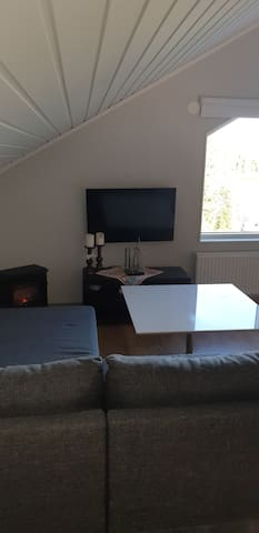 Sofa bed and sitting area with tv.