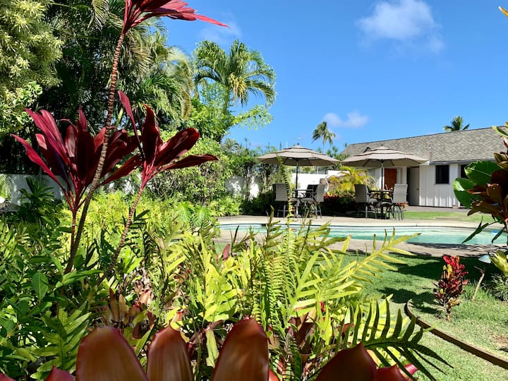 Tropical Oasis in Paradise -- The Pikake