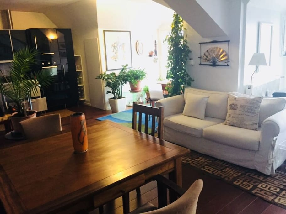 bienvenue au 6 me ciel de strasbg appartements louer strasbourg alsace france. Black Bedroom Furniture Sets. Home Design Ideas
