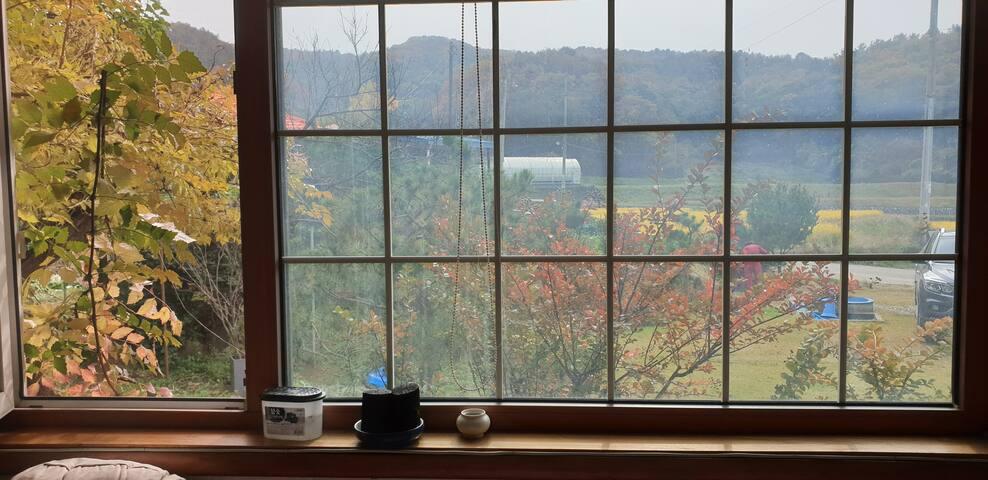 창문으로 본 가을