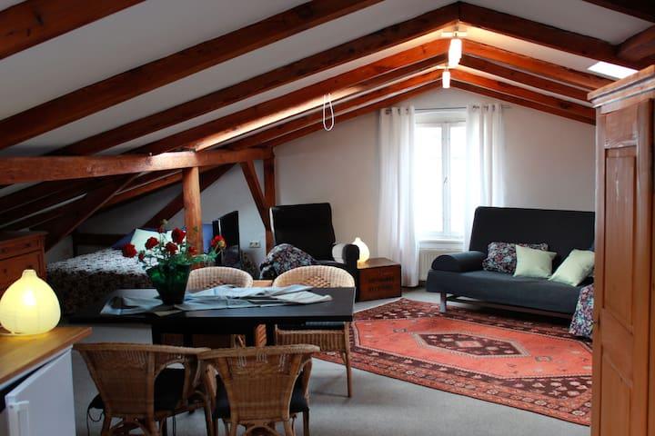 Großzügig und kuscheliges Loft - Ahlbeck, Heringsdorf - Pis