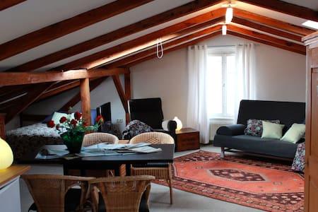 Großzügig und kuscheliges Loft - Ahlbeck, Heringsdorf - Huoneisto