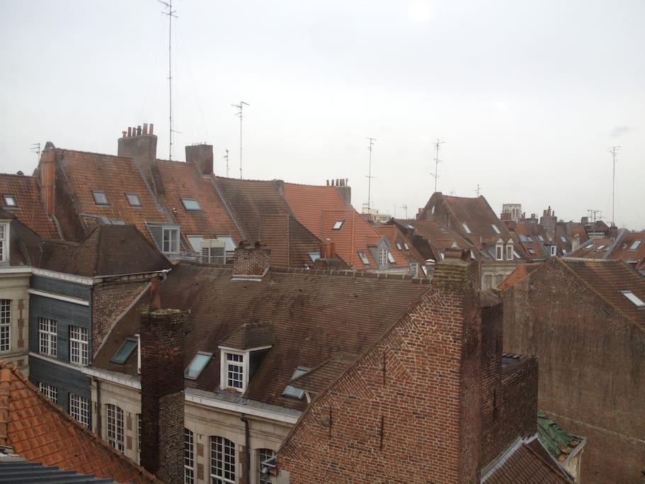 Vue sur les toits de Lille
