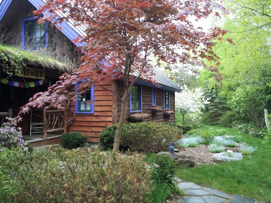 Treewild The Ocean Room Bed And Breakfasts For Rent In Shelburne Vermont United States