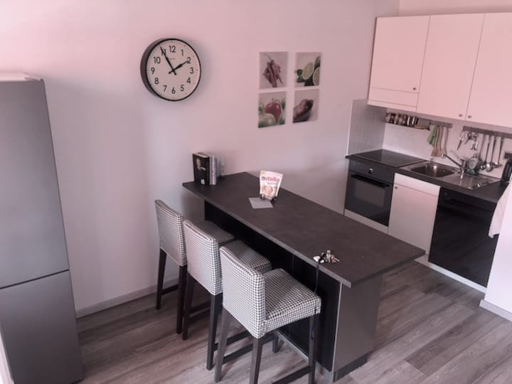 Elegant apartment in Lugano (BAM-App-52 YouTube)