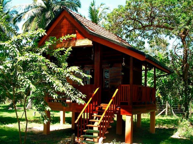 Riviera Wooden Cabana
