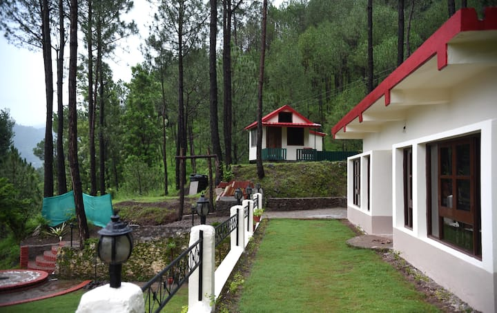 Jungle Accommodation for 2 Persons at PVR, Kasauli
