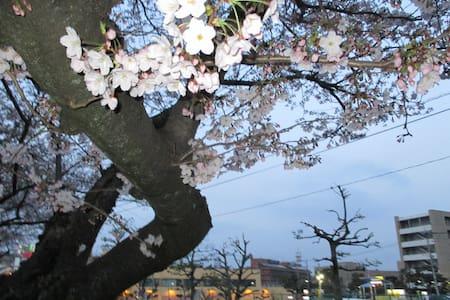 リビングと寝室が別の部屋です。JR八幡駅から徒歩12分です。温水シャワーも新しく取り付け - Kitakyūshū-shi - Haus