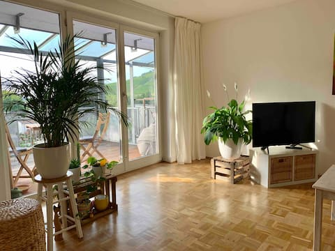 Sonnige, gemütliche Wohnung nahe Heilbronn