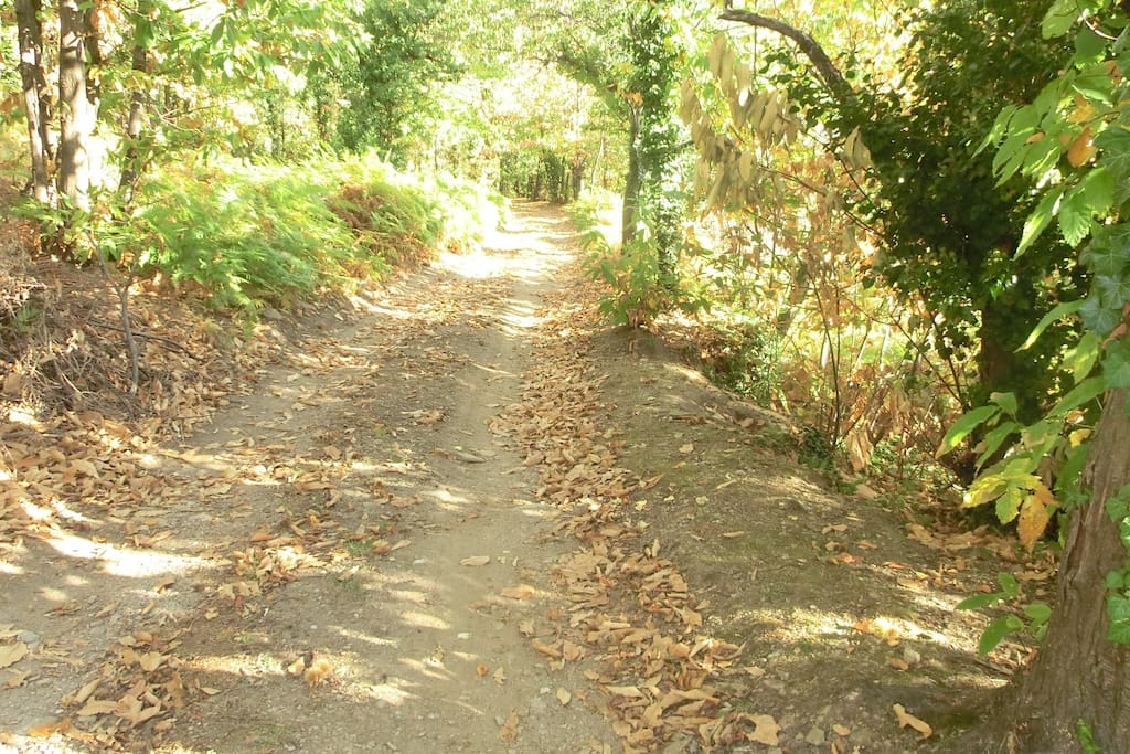 chemin d accès