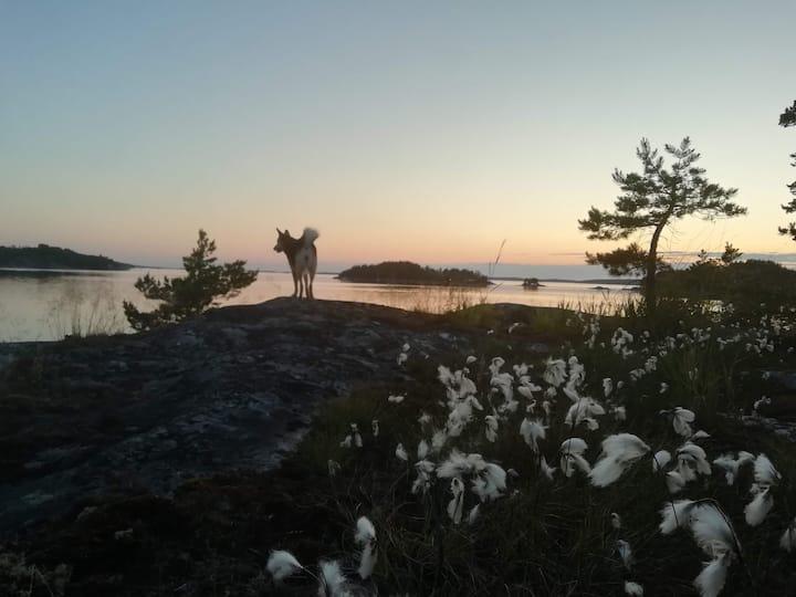 Oma, ihana saari Airiston kainalossa